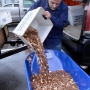 No pocket change: Va. man delivers 300,000 pennies to DMV