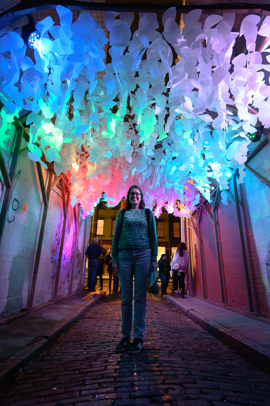 """Arborealis"" is the name of Jessica's sculpture that she displayed in BLINK. It was located in an alley near Findlay Market and consisted of over 3,000 paper leaves, 12 LED lights, and had a soothing recording of crickets and frogs playing as people walked by it. The leaves were populated with critters like frogs, spiders, geckos, and butterflies. / Image: Phil Armstrong // Published: 6.18.20"