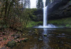 Silver Falls State Park courtesy Ralph .jpg