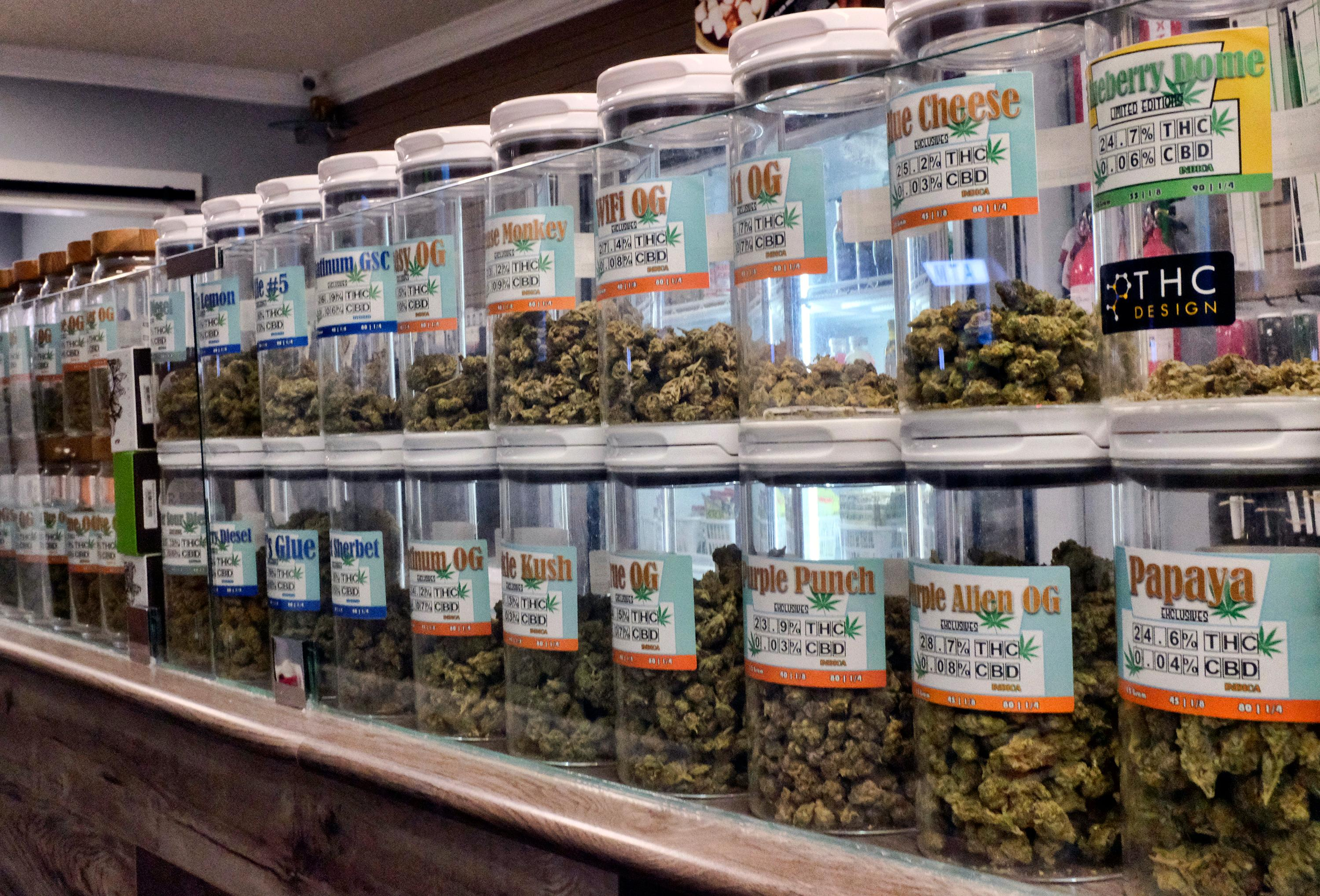 FILE - This Friday, Nov. 3, 2017 photo shows jars of medical marijuana on display on the counter of Western Caregivers Medical marijuana dispensary in Los Angeles. When U.S. Attorney General Jeff Sessions green-lighted federal prosecutors to pursue violators of federal marijuana laws, not only states that legalized recreational pot are at risk of a crackdown, but so is most of the rest of America. All but four states allow some form of medical marijuana, even Sessions' home state of Alabama. (AP Photo/Richard Vogel, File)