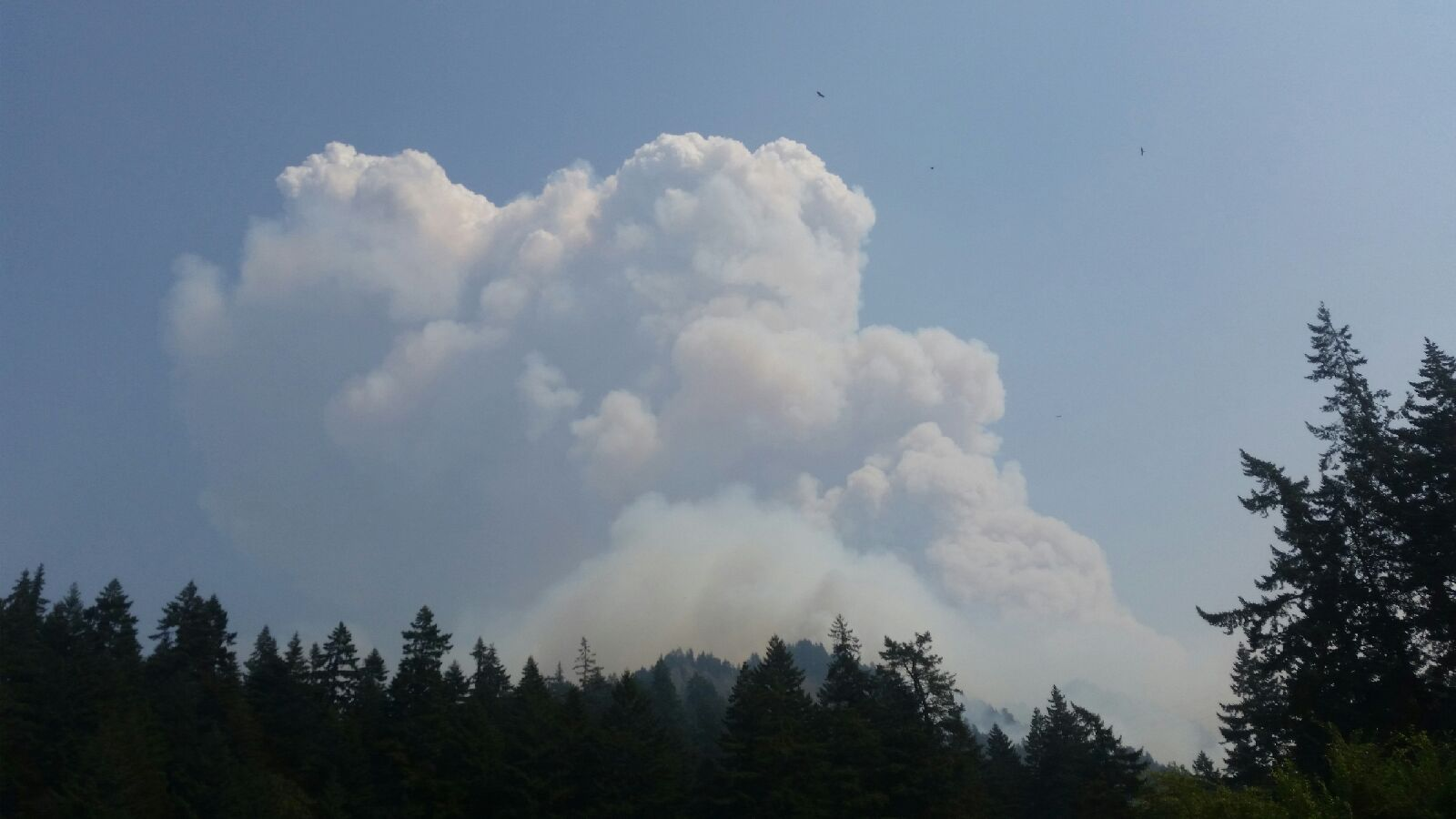 Eagle Creek Fire - Photo from Oregon State Police