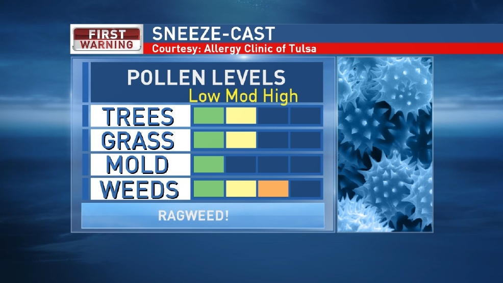 Are you sneezing?