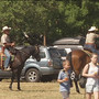Hold your horses, the Mounted Posse will tell you where to park at the Lane County Fair