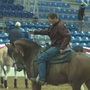 National Arabian and Half Arabian Championship Horse Show kicking off Friday in Tulsa