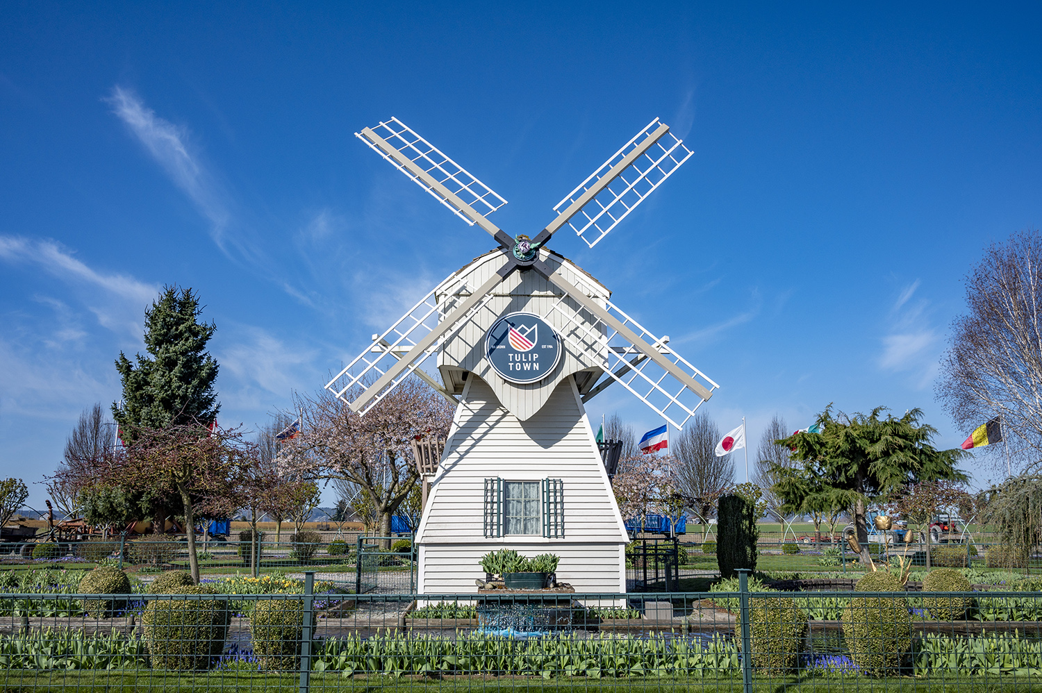 It's hard to say you've been to Tulip Town if you don't take a photo of the classic, Dutch-inspired windmill. The white, spinning structure rotates around slowly just like the windmills of Holland that were used for water drainage and grinding grains. (Rachael Jones / Seattle Refined)