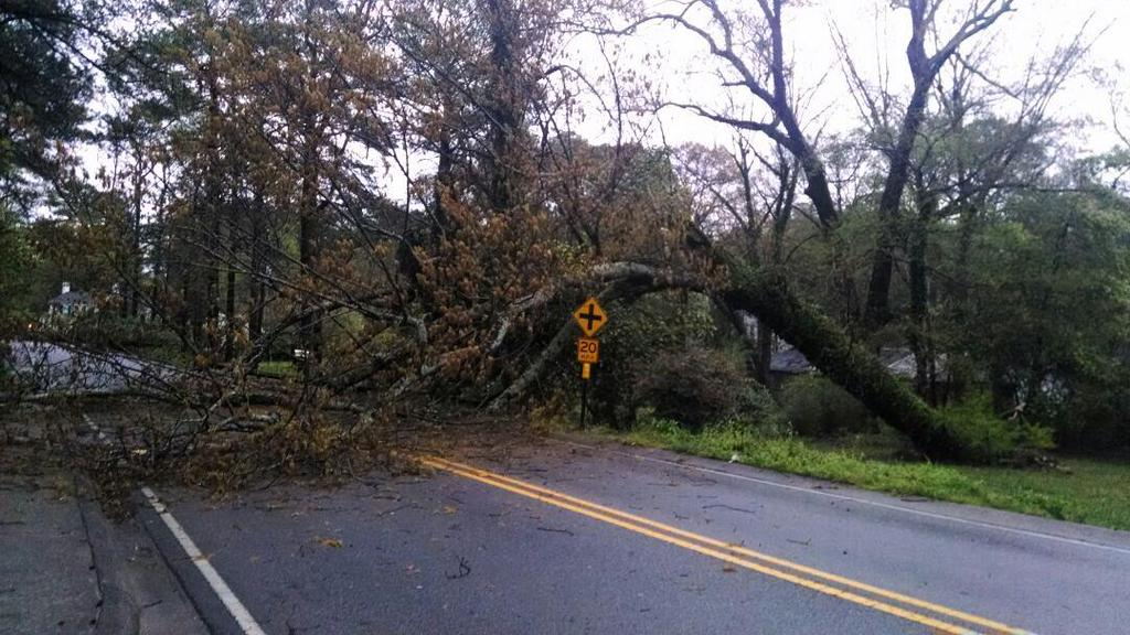 A fallen tree on Montevallo Road near Club View Drive and Mountain Brook Village, Monday, April 7, 2014.