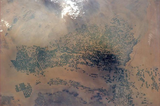 What looks like more than a few wells are irrigation circles in Saudi Arabia (Photo & Caption: Rick Mastracchio, NASA)