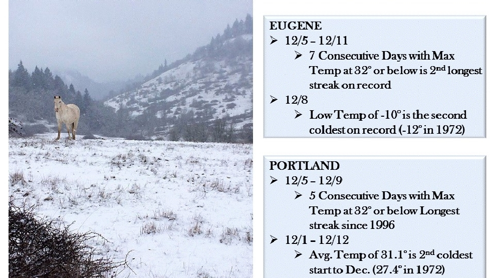 Wet, cold and dry: 2013 sets weather records in Eugene | KVAL Eugene Weather
