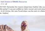 Woman catches record-breaking fish at Lake Powell dwr (4).PNG