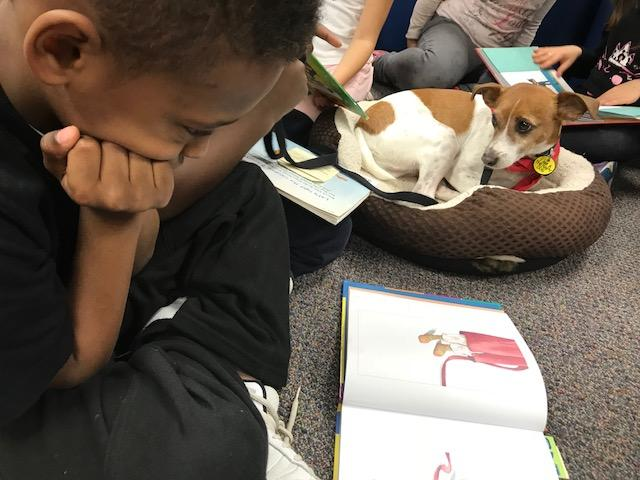 Not all children love to read, especially out loud. But, if their reading buddy is with them, that's a different story. And if their reading buddy is a Tail Waggin' Tutor, that's even better. (Photo credit: WLOS staff)