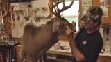 All the Right Stuff: A look inside the world of Taxidermy