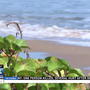 South Padre Island to hold public workshop for community feedback