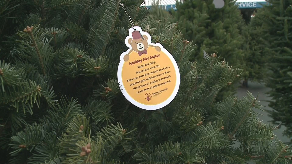 How Often To Water Christmas Tree.Fond Du Lac Informational Ornaments Offer Christmas Tree