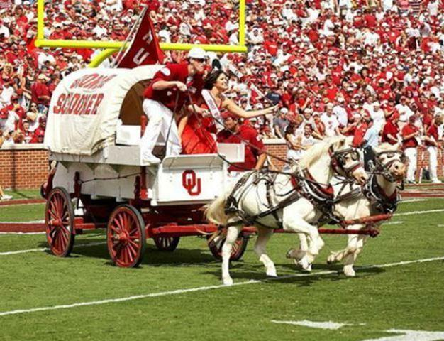 The Schooner, a scaled-down replica of the Conestoga wagon used by settlers of the Oklahoma Territory, made its debut at Owen Field in 1964, and it became the University%u2019s official mascot in 1980.