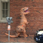 Charleston PD: Person in dinosaur costume spooks carriage horses, carriage driver injured