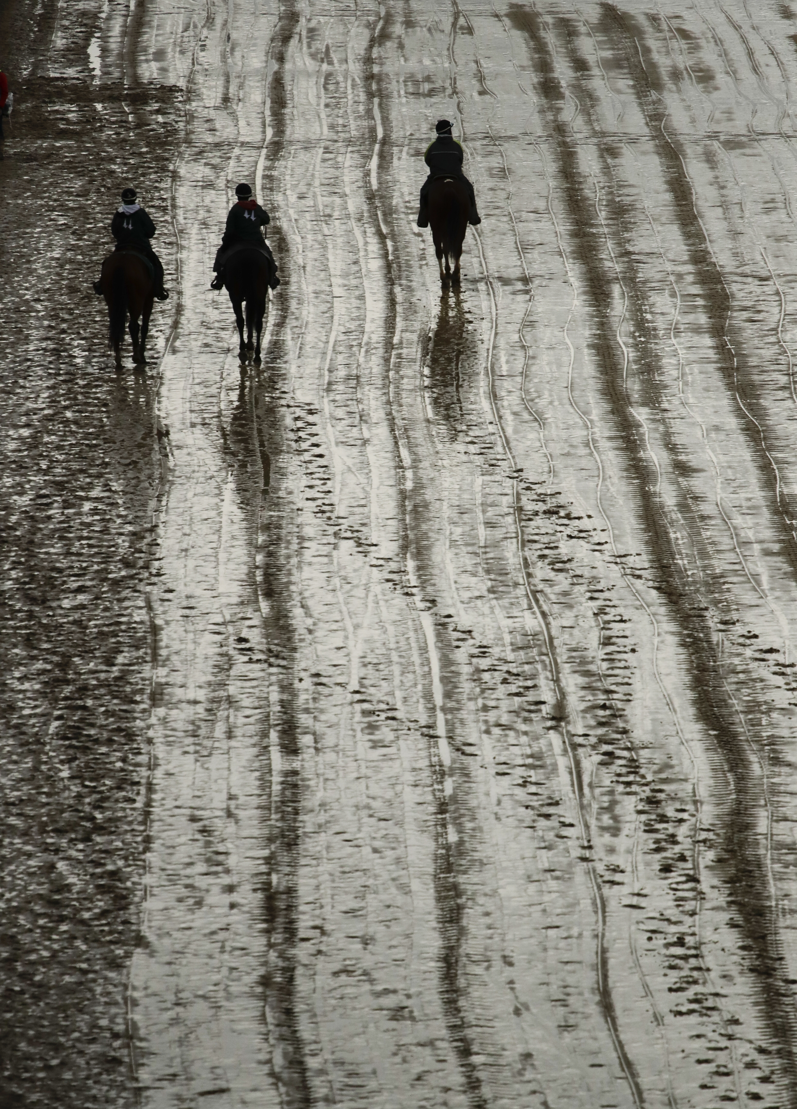 Horses walk on a muddy track before the 143rd running of the Kentucky Derby horse race at Churchill Downs Saturday, May 6, 2017, in Louisville, Ky. (AP Photo/Charlie Riedel)