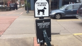 Would bans on smoking, dogs help combat crime in downtown Eugene?