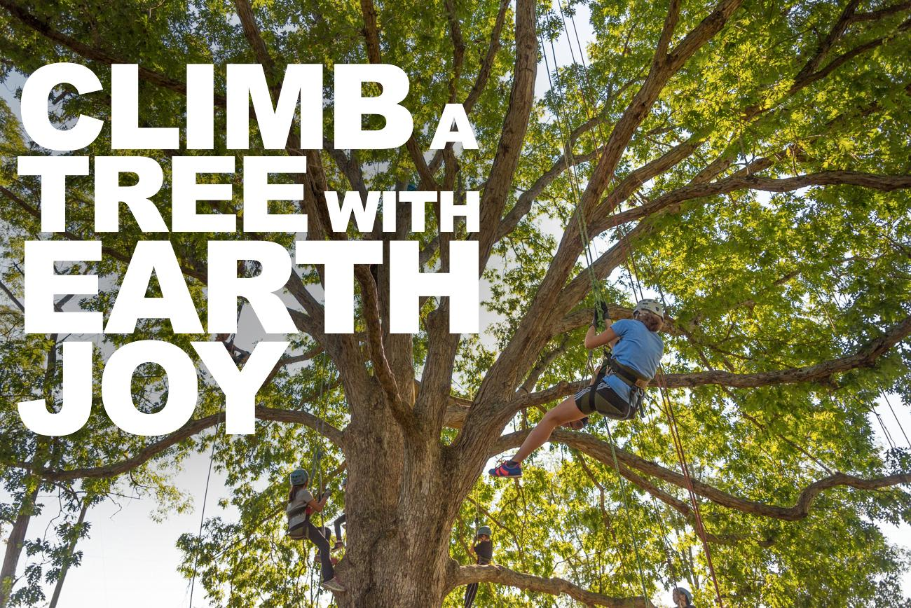 EarthJoy teaches you the ropes on how to climb trees with classes in AJ Jolly Park (Alexandria, KY), Hueston Woods (Oxford, Ohio), Germantown (Kentucky), and Five River Metro Parks (Dayton, OH). / Image: Phil Armstrong, Cincinnati Refined // Published: 3.11.17