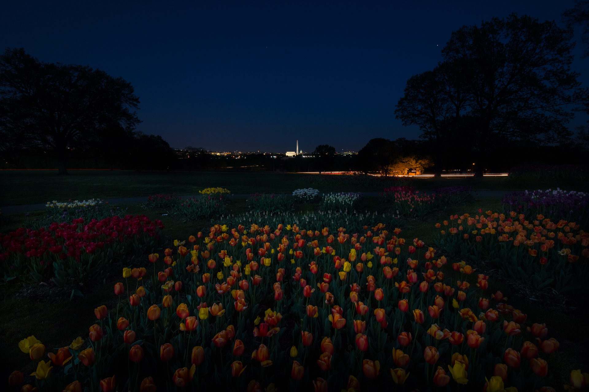 Carillon at Twilight – A view of the monuments while the flowers were in bloom{&amp;nbsp;}(Image: Zack Lewkowicz)<p></p>