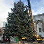 Christmas tree to light up downtown Yakima