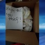 Mom leaves dirty diaper surprise for package thief