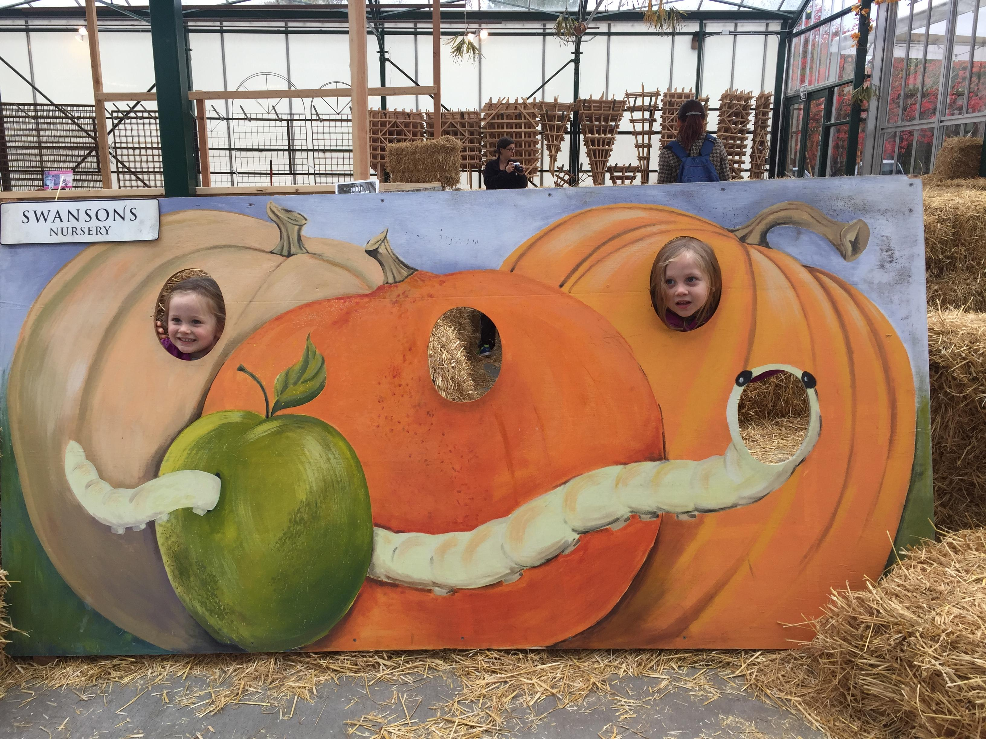 Head to Swanson's Nursery in Ballard for their annual Fall Festival, the weekend of October 14th and 15th from 10 a.m. to 3 p.m. There are hay rides, arts and crafts, a hay maze and family friendly games. (Image: Rebecca Mongrain/Seattle Refined)