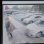 Video shows horrific ATM crash in Boynton Beach