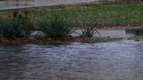 Heavy rains causes flooding in Ford County