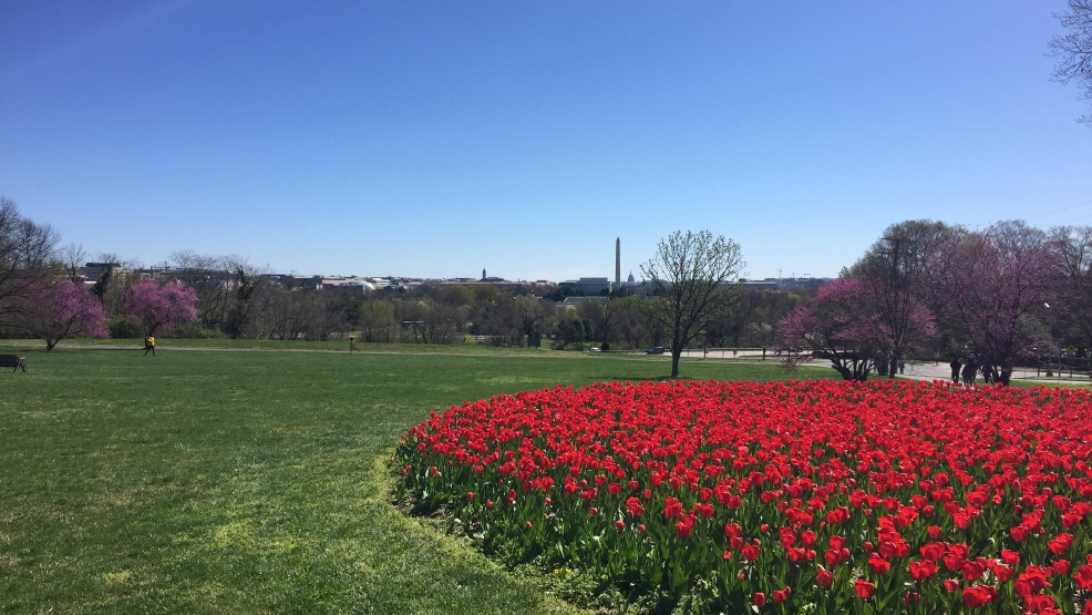 Easter Weekend Weather Outlook for the DC area