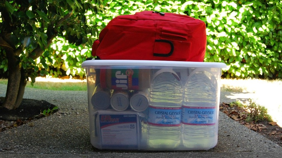 emergency kit 2.jpg