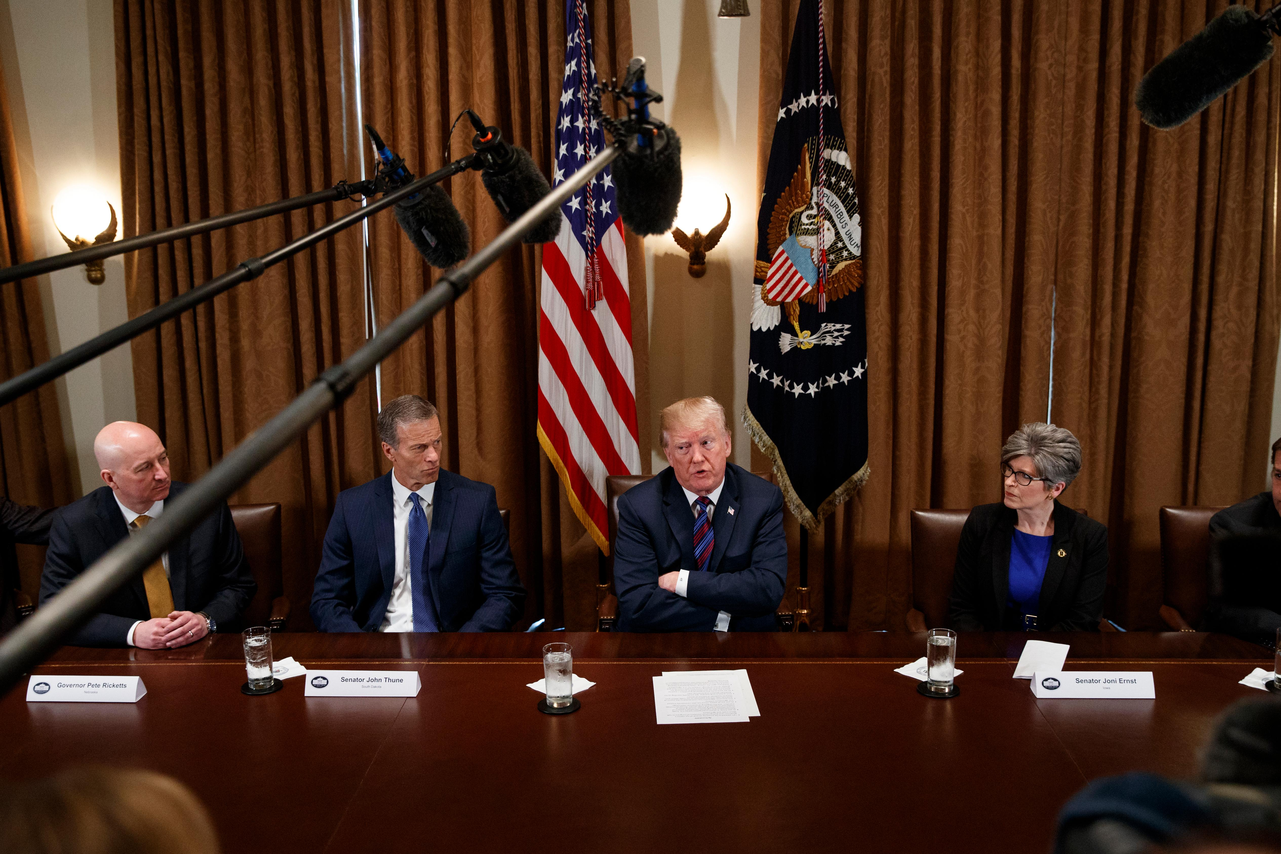 President Donald Trump speaks during a meeting with governors and lawmakers in the Cabinet Room of the White House, Thursday, April 12, 2018, in Washington. From left, Gov. Pete Ricketts, R-Neb., Sen. John Thune, R-S.D., Trump, and Sen. Joni Ernst, R-Iowa. (AP Photo/Evan Vucci)