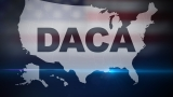 What should happen with DACA?