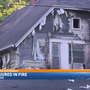 Cat injured in Kalamazoo house fire