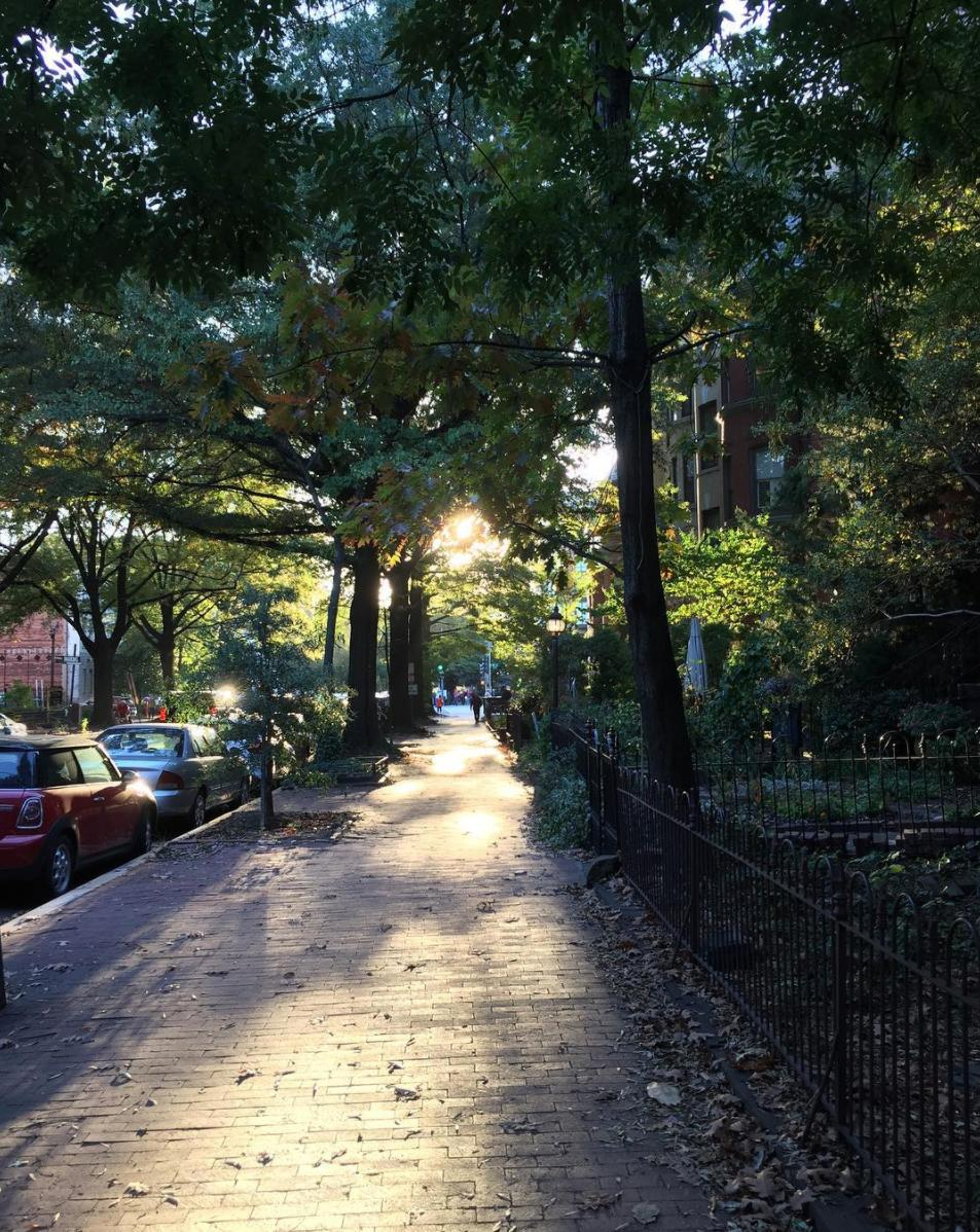Even the sidewalks glisten (Image via golden.hour.global)<p></p>
