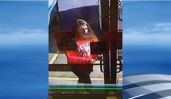 In the photos, she is seen wearing a red hooded sweatshirt and black pants. She also had either brown or red hair. Police said there also may have been a female passenger in the car.  (Hurricane Police Department)