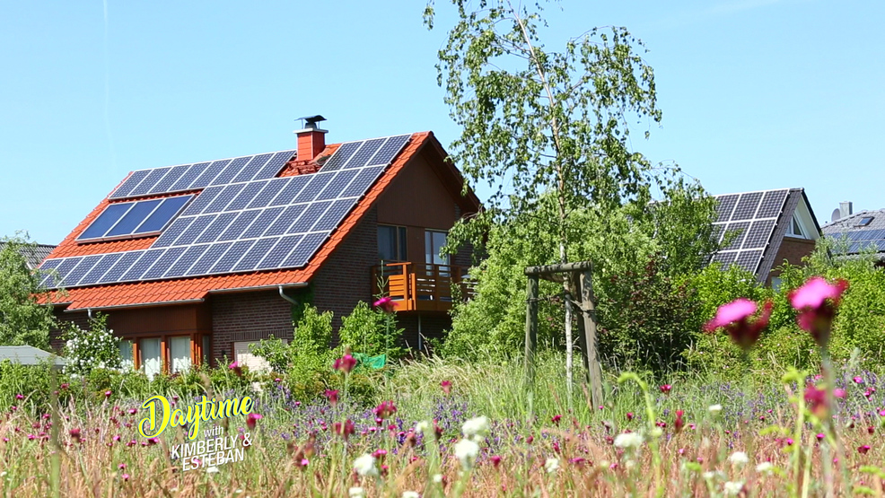 Energy Efficient House with Solor Panels.jpg