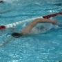 Pulaski swimming excited to compete in state meet
