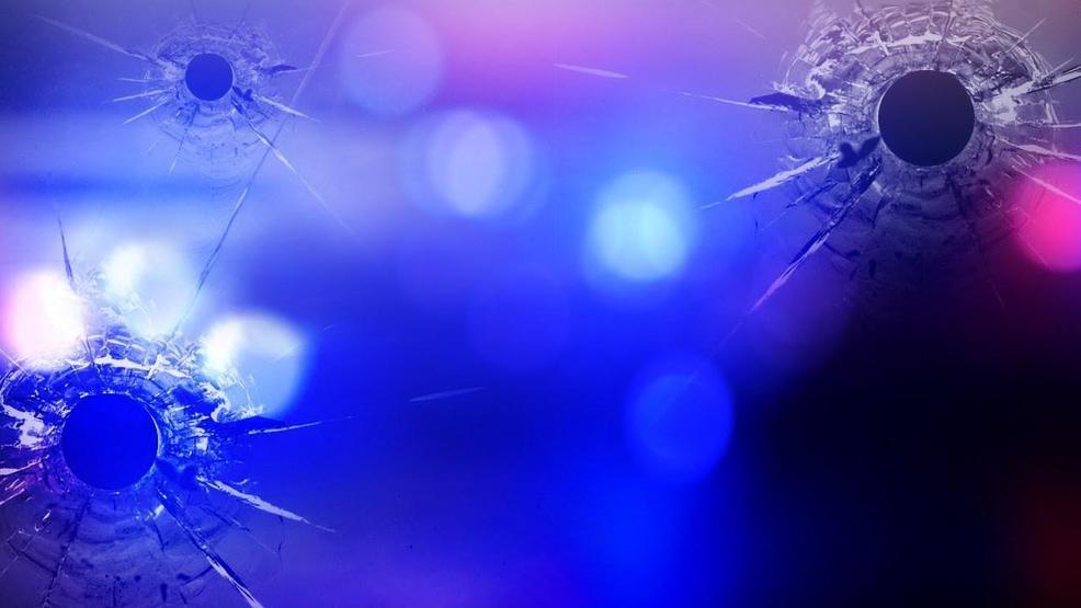 Victim of fatal shooting in Birmingham identified