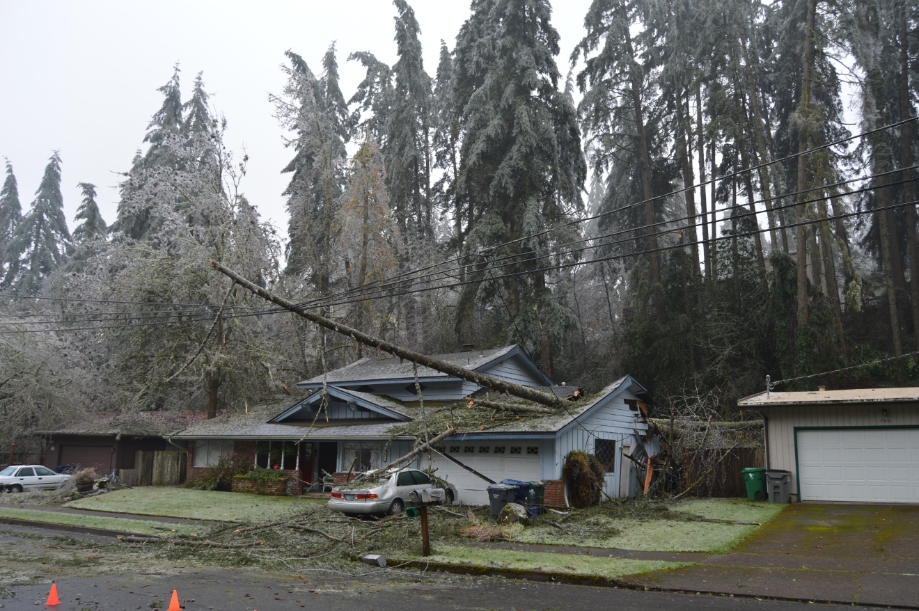 Trees came down on a house on E. 43rd Street in Eugene on Wednesday, east of Spencer Butte Middle School. (SBG)