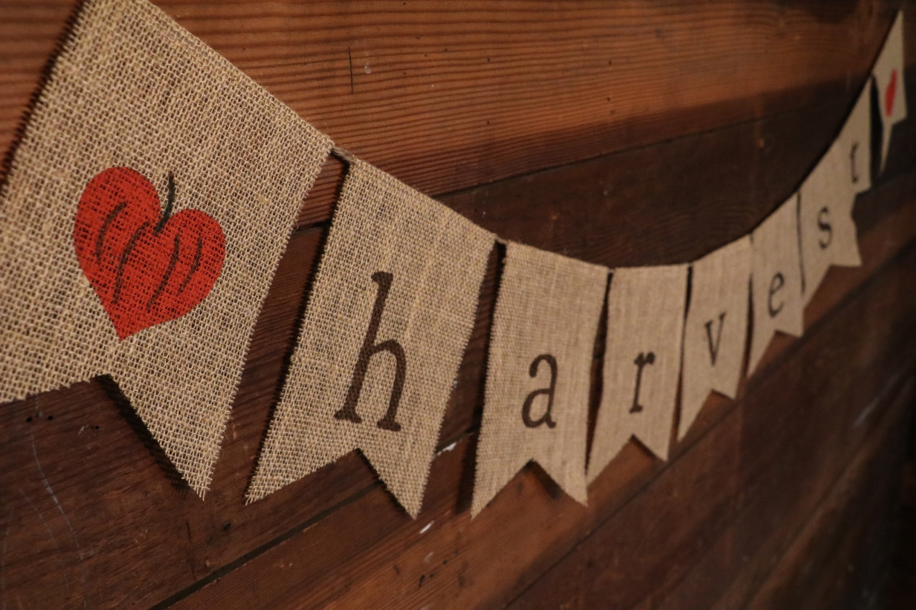Show off your love for the Harvest season with a HARVEST Burlap Garland from Loverlees. (Image:  Devon Carroll)