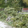 Millard residents clean up damage from Saturday storms
