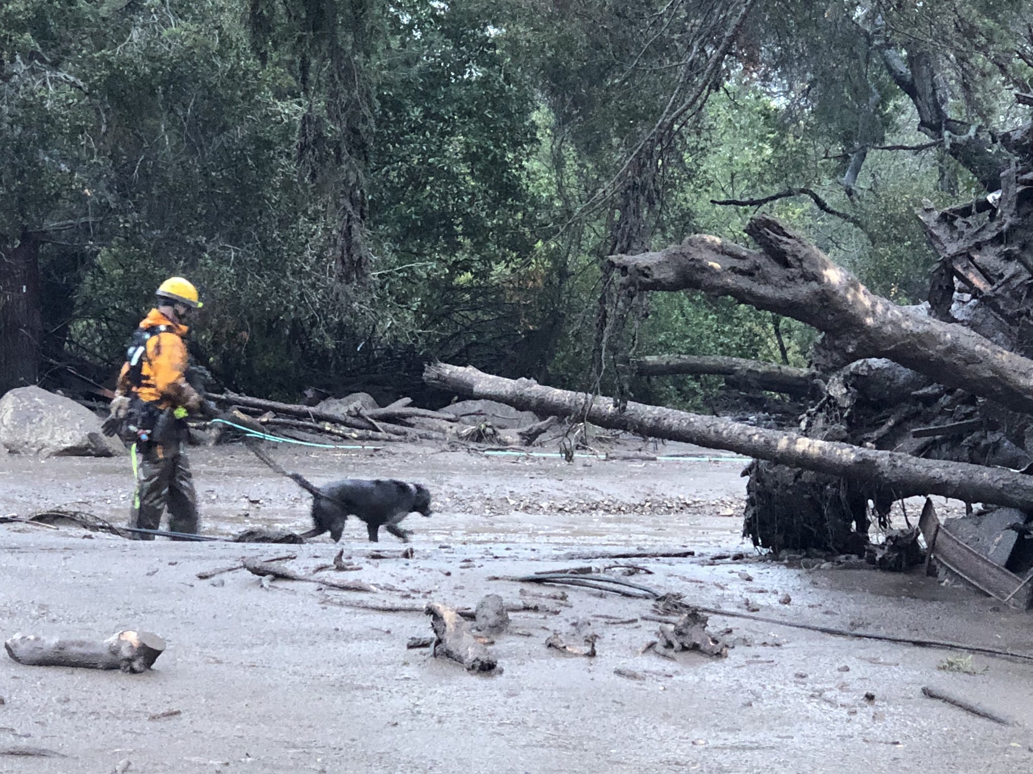 Scene from the 300 block of Hot Springs Road in Montecito following debris and mud flow due to heavy rain. (Photo: Mike Eliason / Santa Barbara County Fire)