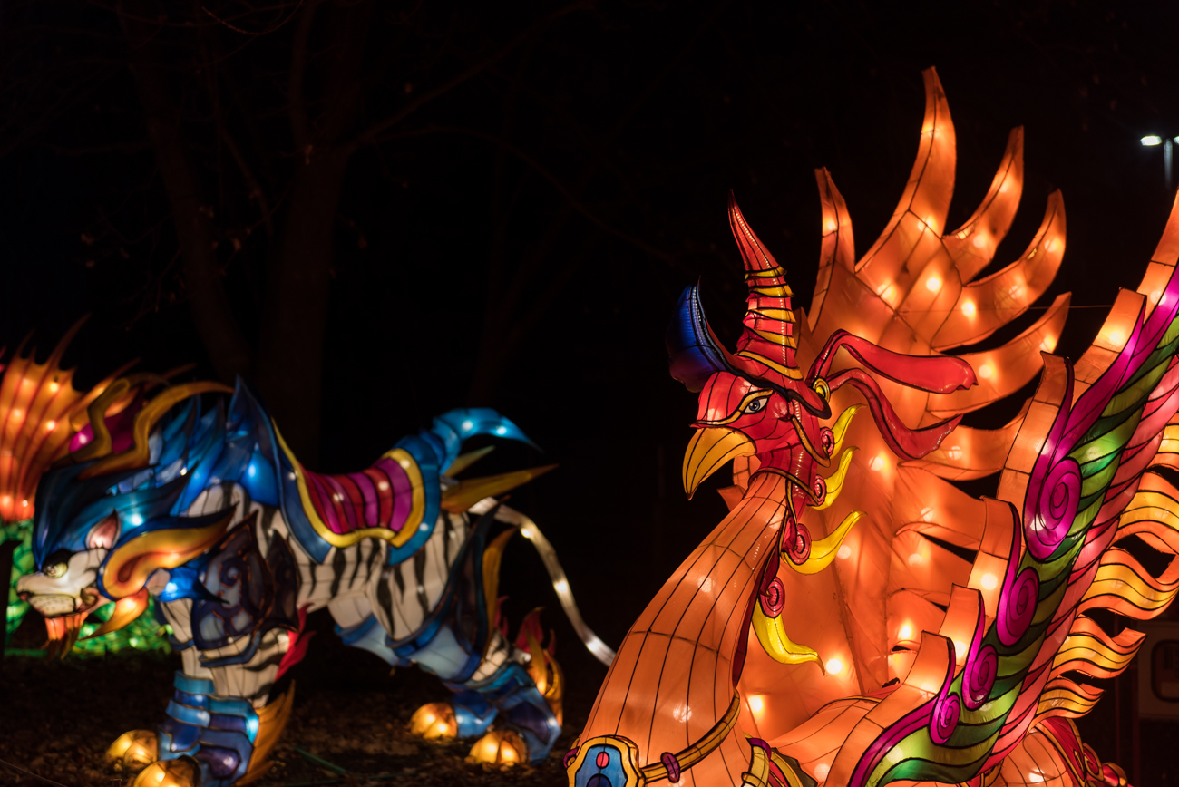 Celebrating Chinese culture, Dragon Lights Columbus illuminates Natural Resources Park at the Ohio Expo Center with more than 40 larger-than-life lantern sculptures. The festival includes professional acrobat performances, a panda-themed marketplace, food and drink, and exclusive Chinese crafted arts. It runs from November 23 through January 6. ADDRESS: 717 E 17th Avenue, Columbus, OH (43211) / Image: Mike Menke // Published: 12.19.18