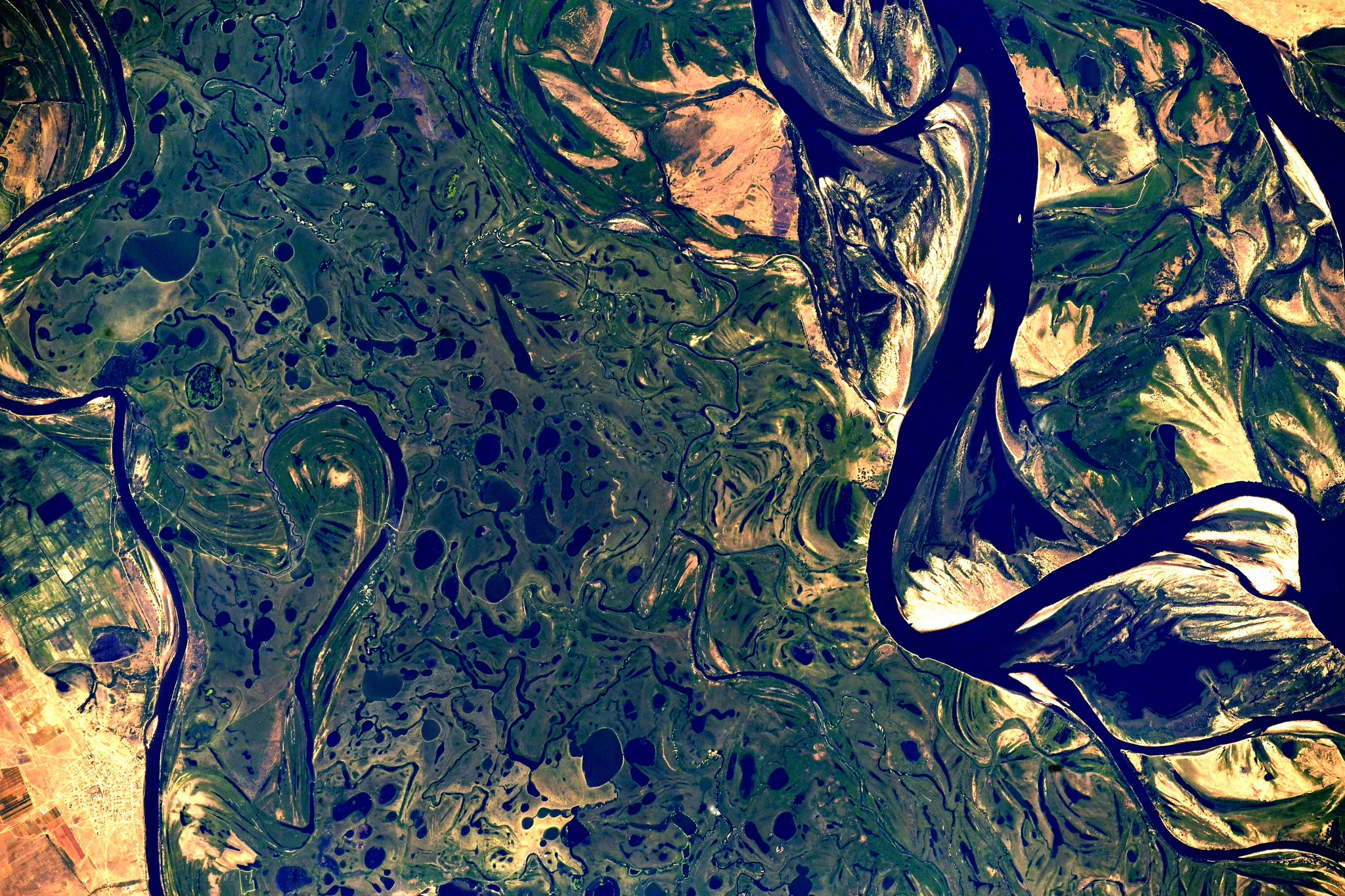 Hard to make these beautiful images up: this is the Volga River delta near Astrakhan before spilling into the Caspian Sea. This is Europe's largest river delta. I took some liberty with color editing but the image is beautiful from @Space_Station. #EarthArt (Photo & Caption: Ricky Arnold / NASA)