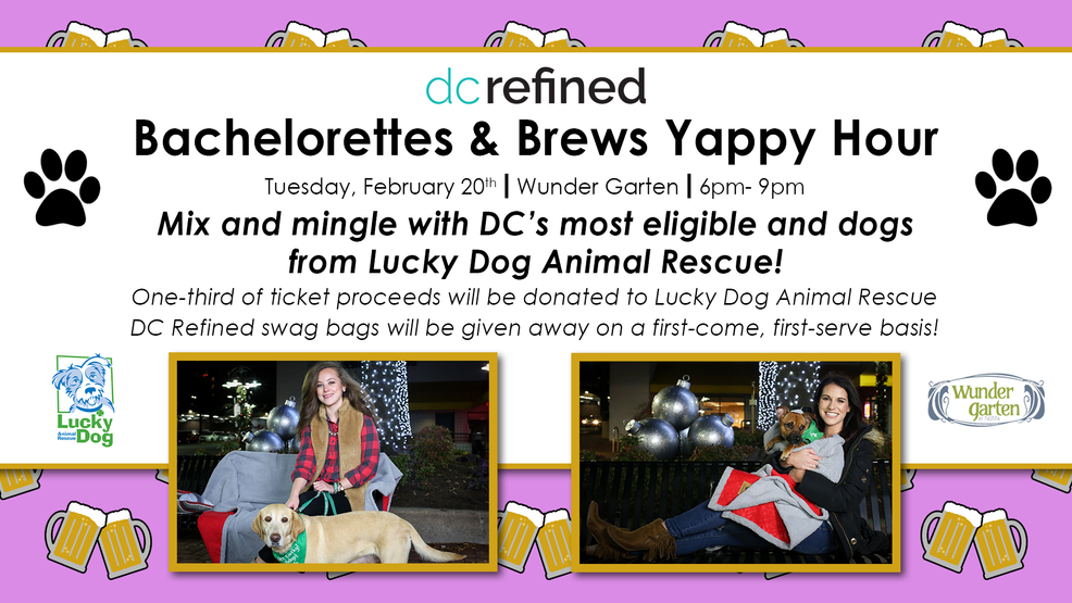 DC Refined Yappy Hour Flyer Feb 2018.png