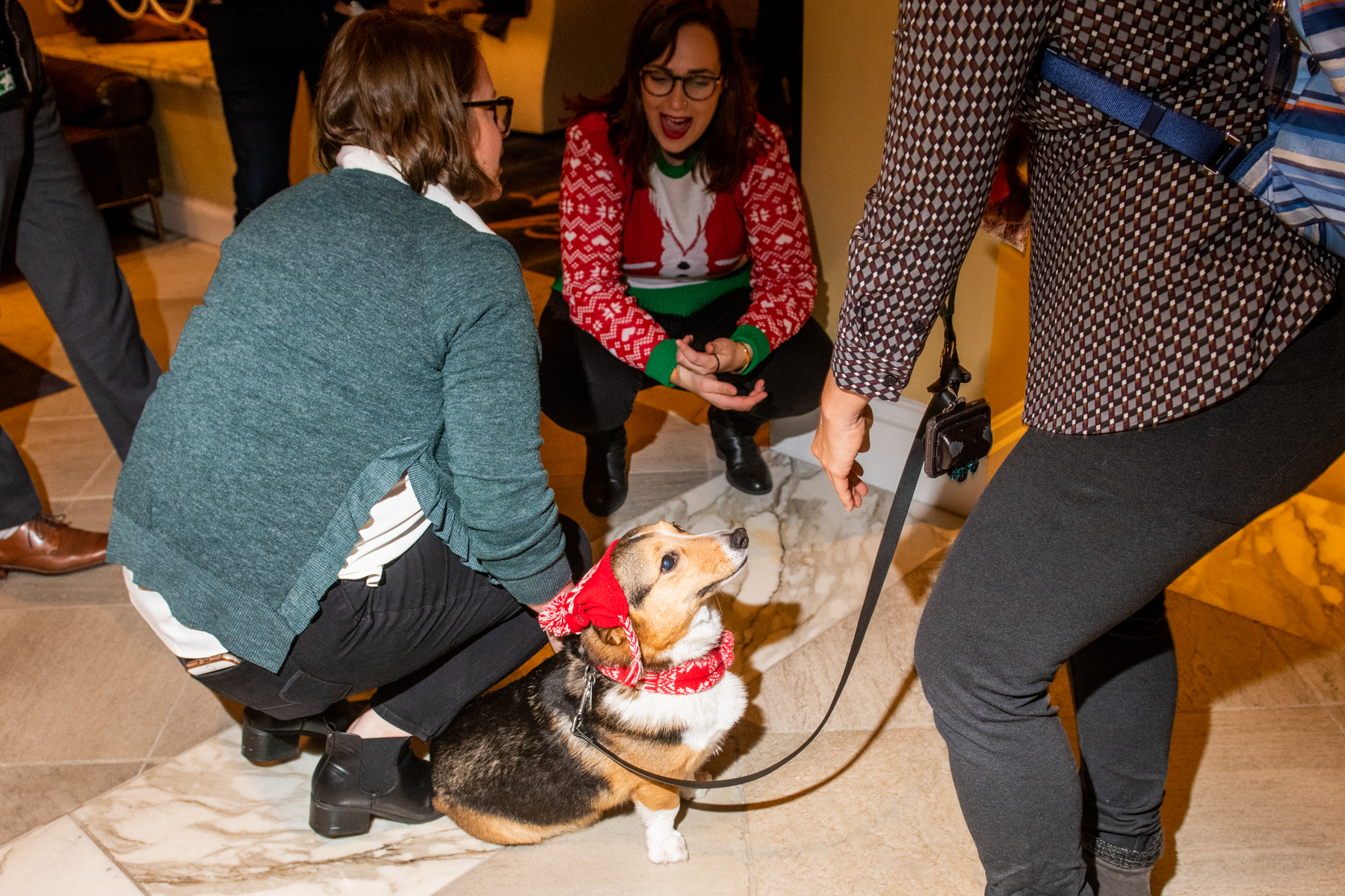 In the spirit of the holidays, Hotel Monaco hosted a howlin' good doggie holiday party last night. Festivities included photo opps with Santa, treats from Seattle's very own Barkery and a special appearance by Insta-famous pooch Scout, the hugging Golden Retriever. The Seattle Humane Society was also{ } on site mingling about with dogs up for adoption.{ } Click on for a formidable collection of adorable dog sweaters from the swanky seasonal soiree. (Image: Chona Kasinger / Seattle Refined)