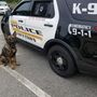 Freetown PD gets their first ever police dog